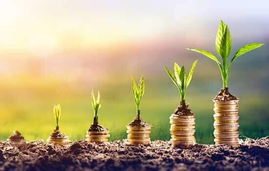 Os 5 melhores investimentos para 2019