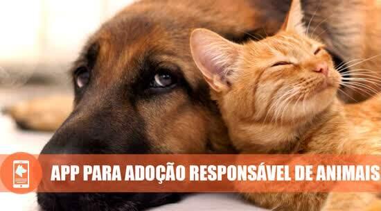 MeAuDote: facilitando doações e adoções de animais