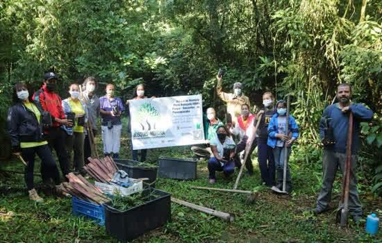 Parque Nascentes de Paranapiacaba ganha Bosque da Memória