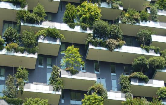 IESE - Cidades em Movimento inclui o meio ambiente como essencial para melhorar a qualidade de vida dos cidadãos