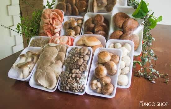 A União Fungo Shop, associação que reúne mais de 200 produtores de cogumelos do Estado de São Paulo acaba de incluir a região entre as atendidas pelo site - Continue lendo