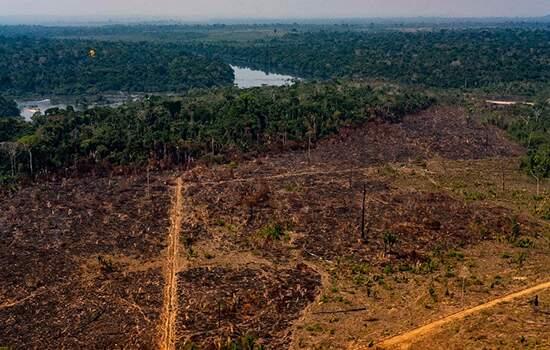 Em 3 projetos, haverá concessão de 1,2 milhão de hectares