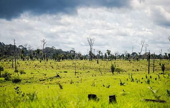 Militares atuarão de 11 de maio a 10 de junho na Amazônia Legal