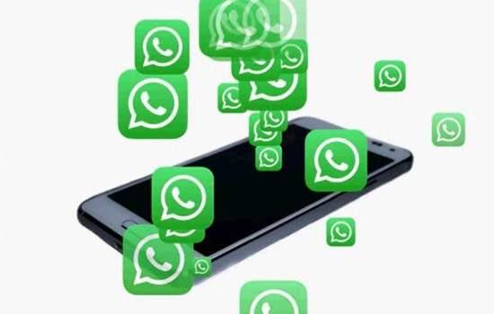 Denúncias  envolvem 720 contas ativas do aplicativo, das quais 256 foram banidas (35%).