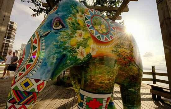 Exposição chama atenção para risco de extinção dos elefantes