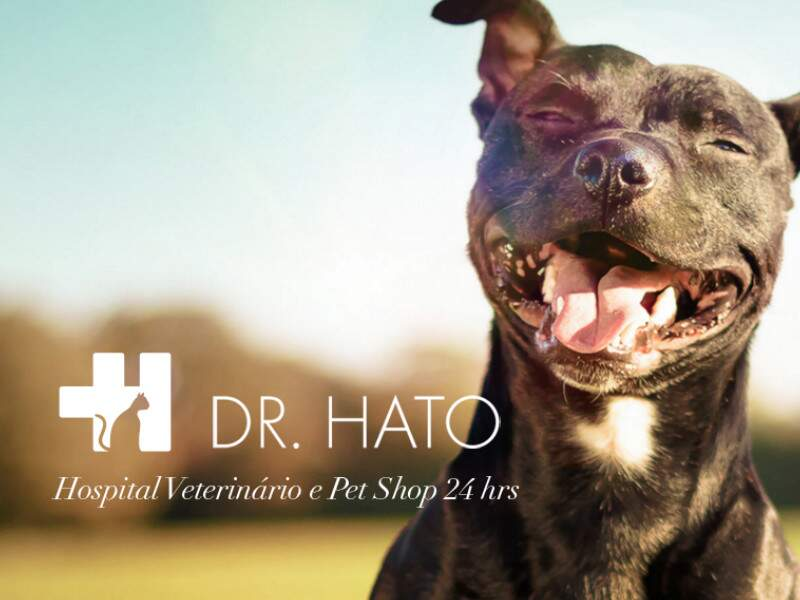 hospital-veterinario-pet-shop-dr-hato