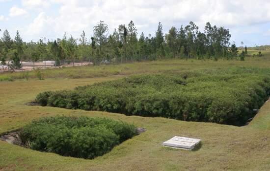 Tratamento ecológico de esgoto na Fábrica de Camaçari, que mantém 2,4 milhões de m² de áreas verdes e um Centro de Educação Ambiental
