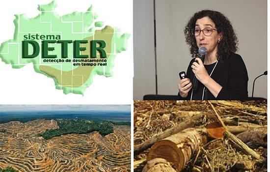 Lubia Vinhas, responsável pelo monitoramento da devastação florestal no Inpe, foi exonerada