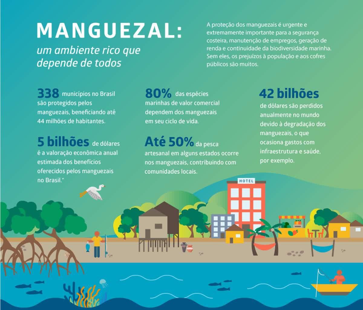 """Fonte: """"Oceano sem mistérios - Desvendando os Manguezais"""" - Fundação Grupo Boticário"""
