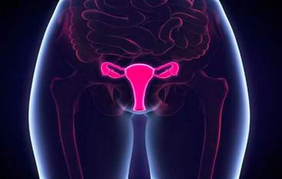 Para o especialista, esse tratamento é indicado como alternativa para as mulheres que têm que retirar os miomas ou o útero em decorrência de sangramento acentuado