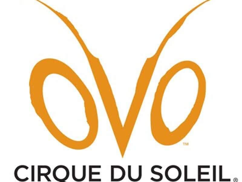 Espetáculo Ovo do Cirque Du Soleil