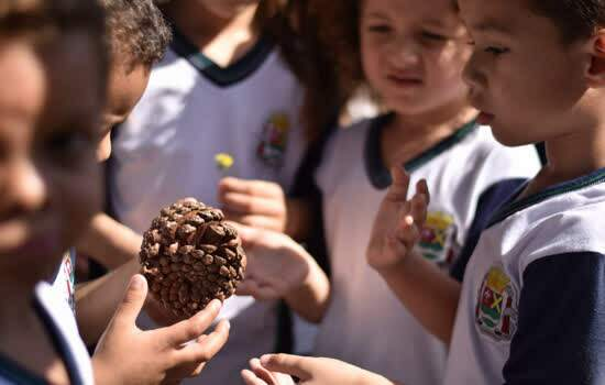 Parque Pérola da Serra recebe atividades de Educação Ambiental em comemoração ao Dia da Árvore