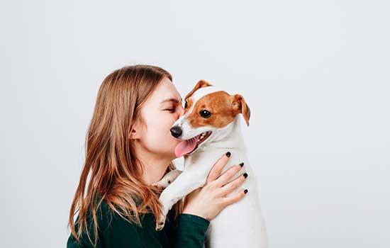 Planeje-se financeiramente antes de adotar um animal de estimação