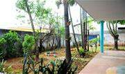 Nos últimos dois meses, os alunos da EMEB Perseu Abramo, na Vila Alice, em Diadema, puderam acompanhar a transformação pela qual passou o jardim da escola - Continue lendo