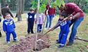 Estudantes realizam plantio de mudas por meio do projeto Plante uma Árvore Aqui , reforçam a importância do bem-estar animal e da sustentabilidade - Continue lendo