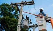 A Prefeitura de São Paulo vai multar a Enel, concessionária de fornecimento de energia elétrica, pela poda irregular de árvores na região da Lapa, zona oeste paulistana - Continue lendo
