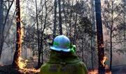 Dezenas de incêndios devastam o leste da Austrália nesta sexta-feira, 8, segundo os bombeiros, que enfrentam grandes dificuldades para extinguir tantos focos ao mesmo tempo - Continue lendo