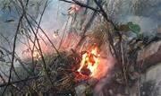 Um incêndio de grandes proporções atinge um trecho de vegetação na Chapada da Diamantina, na Bahia - Continue lendo