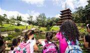 Os alunos ganharam o passeio em uma gincana promovida entre os matriculados nos cursos culturais gratuitos oferecidos pela Prefeitura - Continue lendo