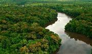 A Advocacia-Geral da União (AGU) decidiu prorrogar a Força-Tarefa em Defesa da Amazônia por mais seis meses, contados a partir de 24 de março - Continue lendo