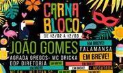 O evento trará atrações como João Gomes, Falamansa e MC Dricka, os blocos Agrada Gregos, Siga Bem Caminhoneira, Minhoqueens, e muito mais - Continue lendo
