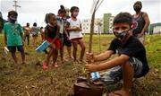 Ação de conscientização e educação socioambiental deu início a formação de pomares de árvores frutíferas em seis conjuntos habitacionais da Companhia - Continue lendo