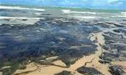 Poluente já foi identificado em mais de 130 pontos do litoral; Petrobrás se limita a dizer que material não é comercializado pela empresa - Continue lendo