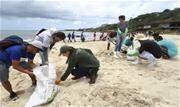 'Homens-tatu' se embrenham entre pedras para retirar óleo de praias nordestinas. Mulheres e homens se esticam e até entram em fendas para tirar petróleo de áreas de difícil acesso - Continue lendo