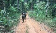 A Polícia Federal (PF) identificou cerca de 15 mil hectares desmatados e em processo de grilagem no município de Altamira, no Pará - Continue lendo
