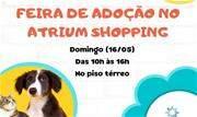 Momento fofura no Atrium Shopping: feira de adoção de pets acontece neste domingo. Empreendimento, além de ser pet friendly, incentiva a adoção e posse responsável - Continue lendo