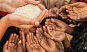 Pouco mais de 47 milhões de pessoas não tiveram comida suficiente em 2019 na região da América Latina (AL) e Caribe, quantidade que aumentará em 2020 com a pandemia do novo coronavírus - Continue lendo