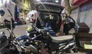 Guardas faziam o patrulhamento na região quando avistaram ocupantes de uma moto em atitude suspeita - Continue lendo