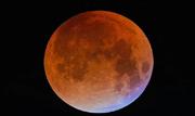 Quem conseguiu ficar acordado na madrugada desta segunda-feira (21) assistiu a um espetáculo raro da astronomia, o eclipse total de uma superlua  - Continue lendo