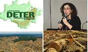 Em meio às maiores taxas de alerta de desmatamento da Amazônia dos últimos 5 anos, a pesquisadora responsável pelo monitoramento da devastação florestal no Inpe, foi exonerada hoje. 13  - Continue lendo