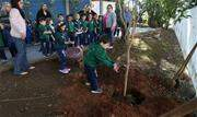 As celebrações pelo Mês do Meio Ambiente estão deixando São Caetano do Sul mais verde e consciente - Continue lendo