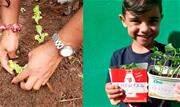 Será montada uma horta comunitária no bairro Jardim Imigrantes com ajuda das famílias - Continue lendo
