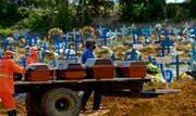 O Brasil deve ter um novo aumento de mortes por covid-19 nos próximos dias e, no pior dos cenários, irá registrar 973 mil óbitos relacionados à doença até setembro - Continue lendo