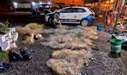Um homem foi multado em R$ 1.200 durante fiscalização ostensiva da corporação; ação integra operação de combate à caça ilegal de animais - Continue lendo