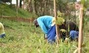 A preservação de duas áreas do município – em Ouro Fino e no Santa Luzia, é realizada pela Sabesp em cumprimento a TAC junto ao município - Continue lendo
