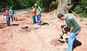 Com o plantio de 80 árvores, Eldorado é a quarta região a receber a ação - Continue lendo