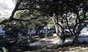 """Depois de anos de abandono, a Praça do Sol foi revitalizada pelas equipes do programa Jogue Limpo com Diadema e entregue de """"cara nova"""" aos usuários - Continue lendo"""