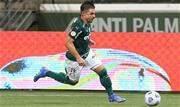 Com 66 gols, atacante é o segundo maior goleador do atual elenco e do Palmeiras no século XXI, atrás apenas de Dudu - Continue lendo